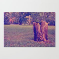 Tree Stump Canvas Print