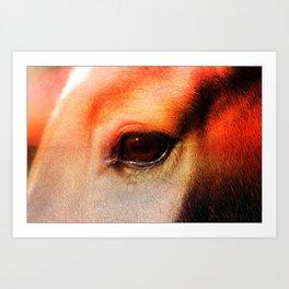 An Equine Sunset Art Print
