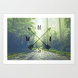 Compass in the Redwoods Art Print