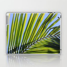 Palm Frond Laptop & iPad Skin