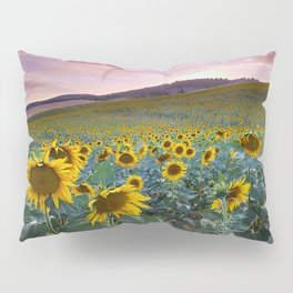 Wonderful Sunflowers. Pink Sunrise Pillow Sham