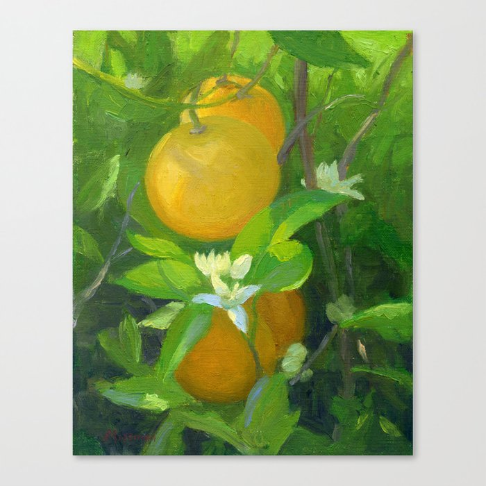 Orange Tree with Oranges and Blossoms Canvas Print