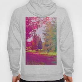 Wherever You Go, Go With All Your Heart Hoody