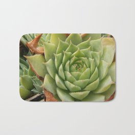 Hens and Chicks Plant Bath Mat