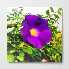 The Purple Flower Metal Print