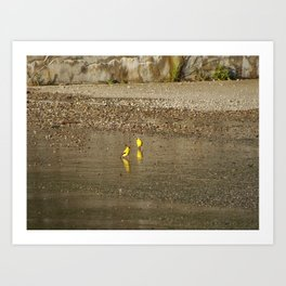 Two Yellow Birds Standing in the Water Art Print