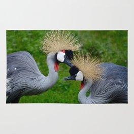 Grooming East African Crown Cranes Rug