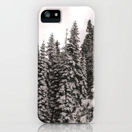 Winter Wonderland - Carol Highsmith iPhone Case