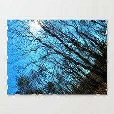 Sky Wrinkles Canvas Print