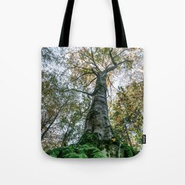 Image seen from below of a tree with large roots covered by bright green moss Tote Bag