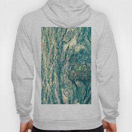 New Life Photography Hoody