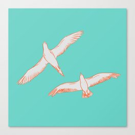 Seagull Marriage Canvas Print