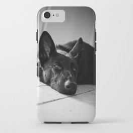 Dog German Shepherd  iPhone Case