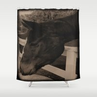 horses Shower Curtains featuring Horses by Annie Fourguette