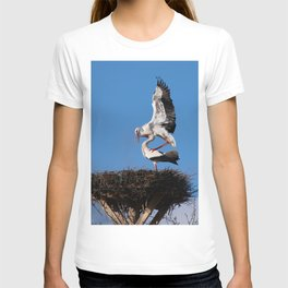 #Two #Ciconia #ciconia, #Stork #mating T-shirt