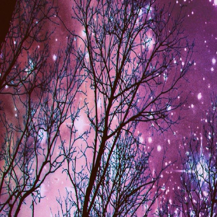 Black Trees Dark Space. Leggings