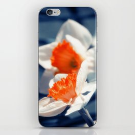Narcissus Flower iPhone Skin