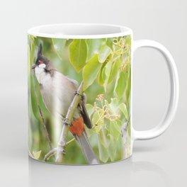 Red-Whiskered Bulbul -- 2 Coffee Mug