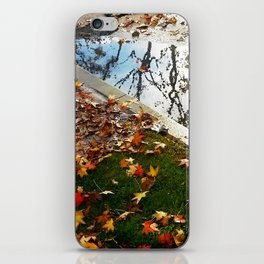California Winter iPhone Skin