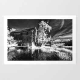Abandoned beauty Art Print