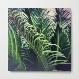 Palm Curl Metal Print