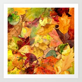 The Fall Forest Floor Art Print