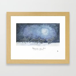 Siberian roe deer in the moonlight Framed Art Print