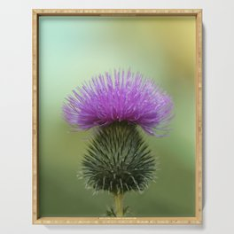 Bright Purple and Green Thistle Serving Tray