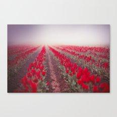Tulip Perspective Canvas Print