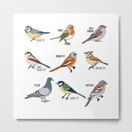 Cute Bird Animals Birdwatching Gift Metal Print