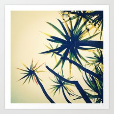 Palms on Palms Art Print