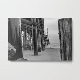 Newport Gull in Grey Metal Print