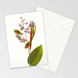 Golden crested-Wren Vintage Scientific Bird Illustration Stationery Cards
