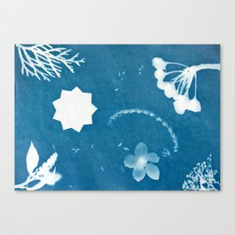 Sunprint - 9 Pointed Stars (2) Canvas Print