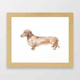 A long dog: Dachshund doxie puppy dog watercolor pet portrait Framed Art Print