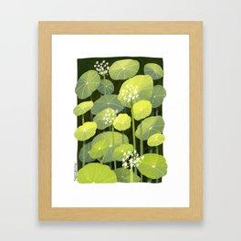 Diochondras Framed Art Print