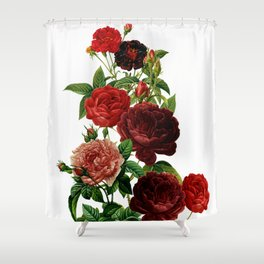 Vintage & Shabby Chic - Red Roses Shower Curtain