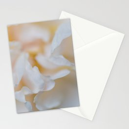 Rose - Flower Photography Stationery Cards
