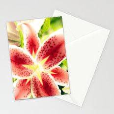 Lily star Stationery Cards