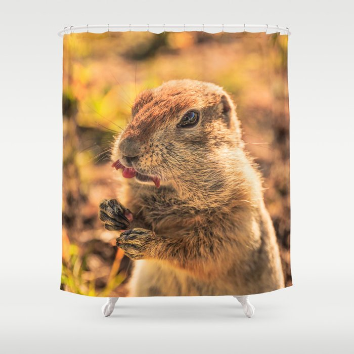 I wasn't going to eat it, I was just going to taste it Shower Curtain