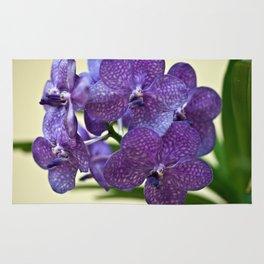 Wanda orchid 8353 Rug