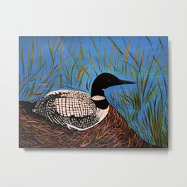 Loon on the Nest  Metal Print