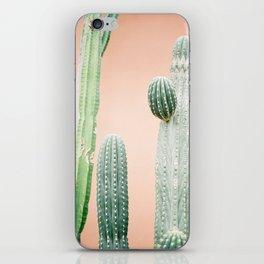 Botanical photo of green cactuses in Morocco | pastel orange background | Fine art film photography iPhone Skin