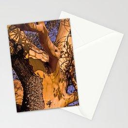 MADRONA TREE TORSO Stationery Cards