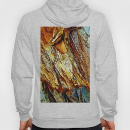 Colorful Nature 1 Hoody