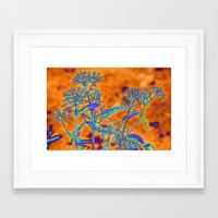 popart Framed Art Prints featuring PopArt Floral by AlexisAnne