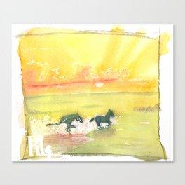 splash of sun Canvas Print