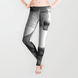 Horse (Black and White) Leggings