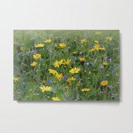 Wild flowers No. 2 Metal Print