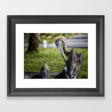 Pelican Itch Framed Art Print